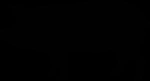 PORK-300x163